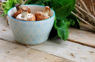 cogumelos com espinafre foto