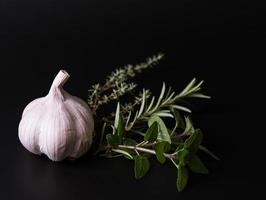 ervas aromáticas e alho foto