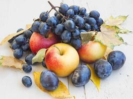 variedade madura de maçãs, uvas e ameixas de outono foto