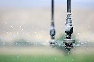 irrigação de perto foto
