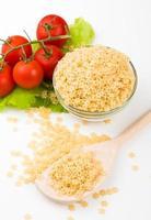 tomate, folha e pasta isolado no branco foto