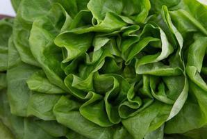 folhas de alface verde foto