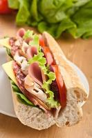 sanduíche de baguete de metrô longo com carne, legumes e queijo