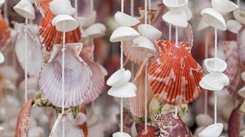shell móvel
