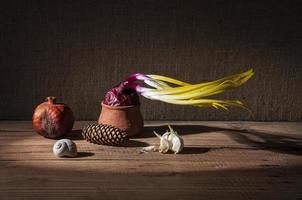 cebolas germinadas e romã seca