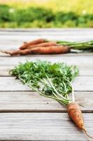 cenouras orgânicas frescas na mesa de madeira foto