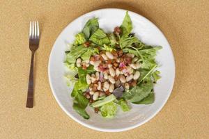 salada de feijão cannellini foto