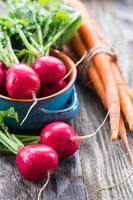 rabanetes e cenouras frescas foto