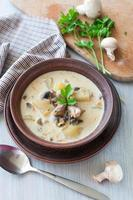 tigela de sopa vegetariana de cogumelos foto