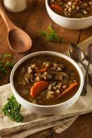 sopa caseira de cevada com cogumelos foto