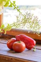 tomate e pimenta foto