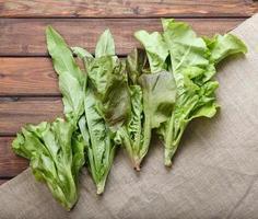 mistura de folhas de alface foto