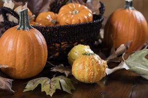 abóboras e milho para decoração de ação de Graças foto