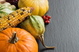 fundo de outono com abóboras foto