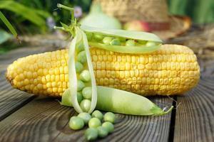 frutas de verão saúde nutrição variedade de vitaminas foto
