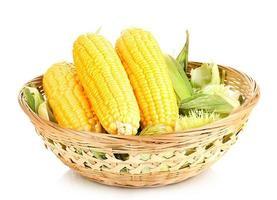espigas de milho fresco no cesto isolado no branco