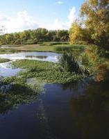 refúgio nacional da vida selvagem em lagos de pedra foto