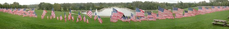 centenas de bandeiras americanas no parque florestal, saint louis, missouri foto