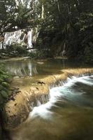 rio e floresta