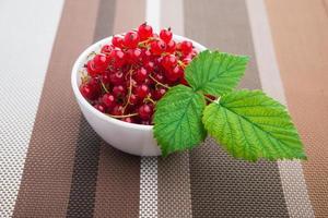 corrente de frutas de verão foto