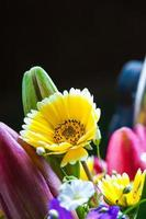 flores do verão foto