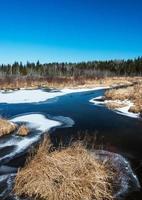 riacho do norte no início da primavera foto