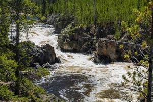 Parque nacional Yellowstone foto
