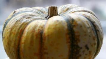 foco suave close-up de uma pequena abóbora amarelo claro foto