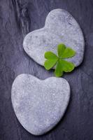 duas pedras cinzentas em forma de coração com trevo de três folhas