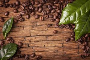 grãos de café e folhas verdes foto