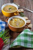 sopa com buck. foto