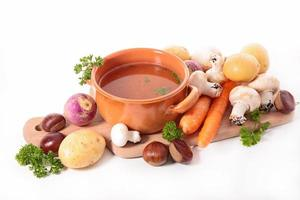 sopa e ingrediente foto