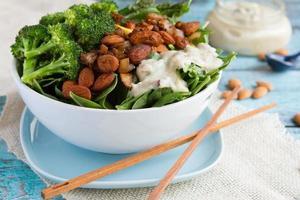 saladeira vegana foto