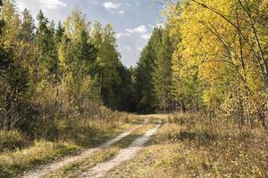 paisagens de outono foto