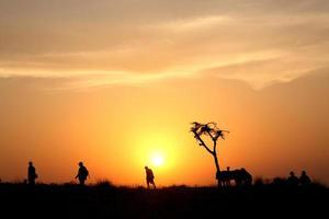 paisagem por do sol foto