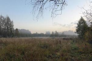 paisagem de outono foto