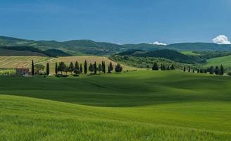 paisagem típica da Toscana