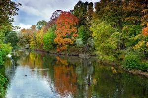 paisagem de outono brilhante