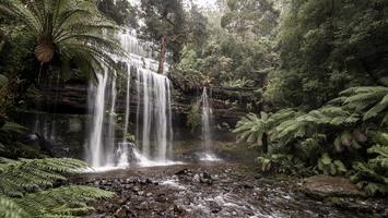russell falls foto