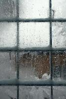janela de inverno foto
