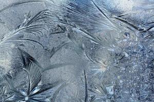 padrão de inverno foto