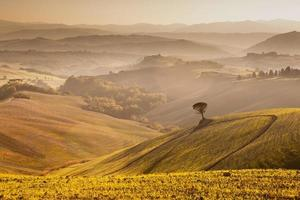 crepúsculo da Toscana foto