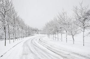 inverno foto