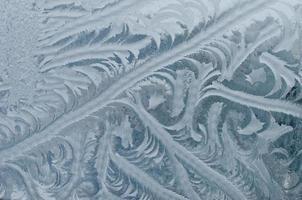 fundo de geada do inverno foto