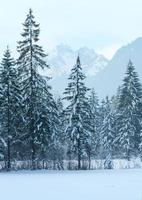 paisagem de montanha do inverno foto