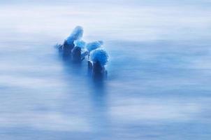 lago de manhã de inverno