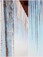 natureza do inverno belas imagens de colagem