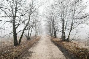 estrada bonita do inverno foto