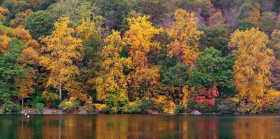 lago de outono foto