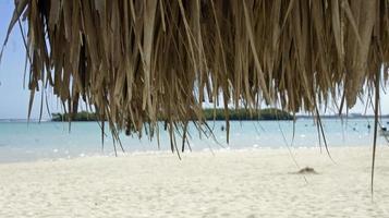 praia de boca chica foto